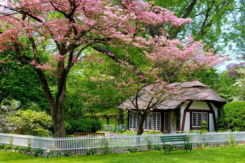 BBB: Maisons et jardins de rêve