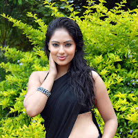 Nikesha patel hot in saree