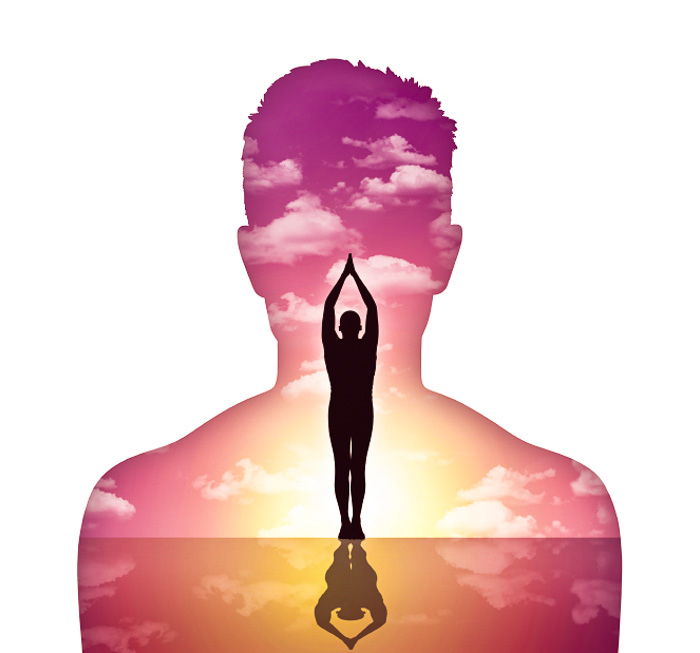homeostasis, equilibrio