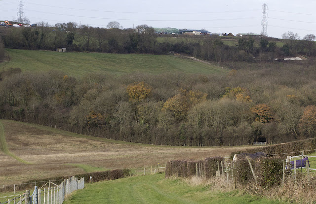 The diagonal track into the valley from Ashmore Farm. Leaves Green, 3 December 2011.