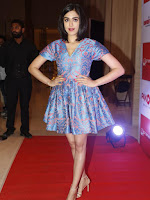 Shriya, Kriti Kharbanda, Pooja Hegde, Adah Sharma and Sharmila Mandre Stills at SIIMA 2015 Press Meet