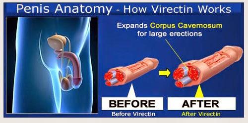 obat pembesar penis vimax asli original canada