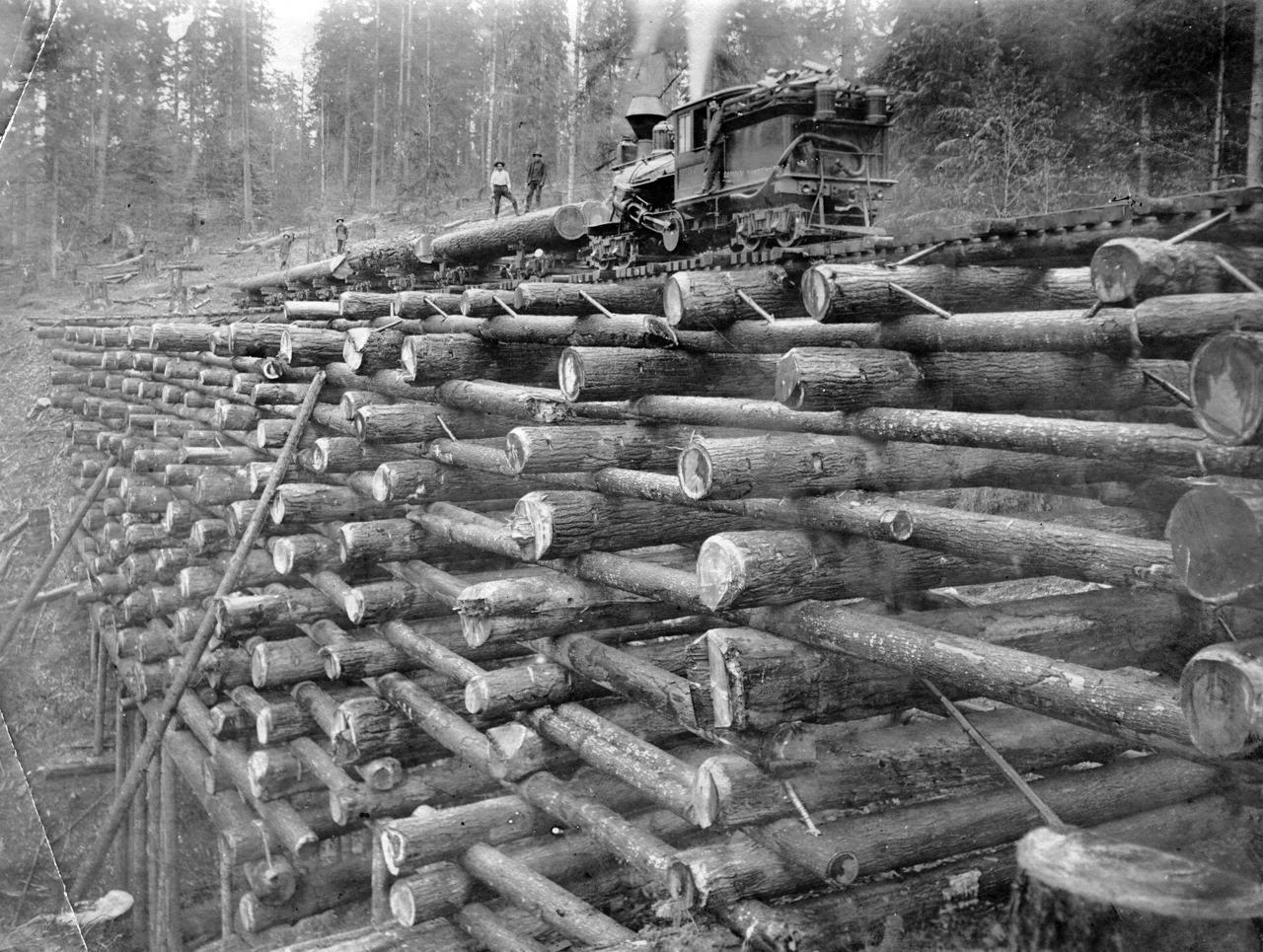 Wooden Log Railway Bridge