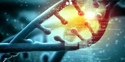 Una nueva técnica localiza el origen de tu ADN hasta mil años atrás