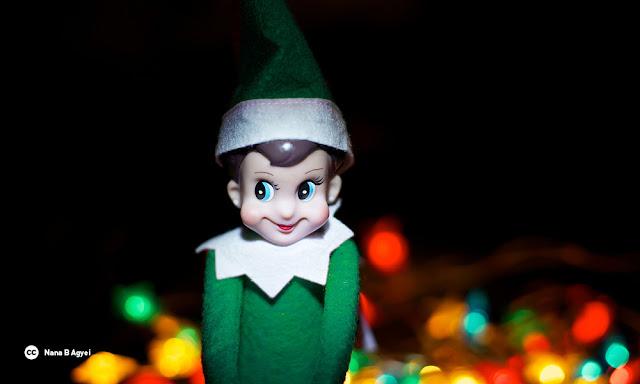 Environmental Elf on a Shelf