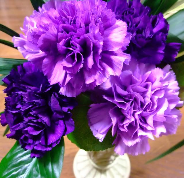 ohio state flower carnation