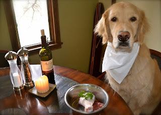 Как правильно кормить щенка или собака. Чем кормить и сколько раз.