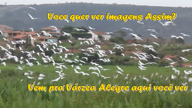 VÁRZEA ALEGRE - COISA NOSSA