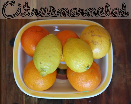 citrusmarmelad
