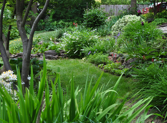 uneven garden ideas - vertical