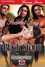 Black Storm (Panther Key 1)