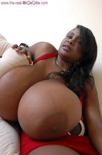 Miosotis Claribel Black Busty Beautiful Goddess | Veronica ...
