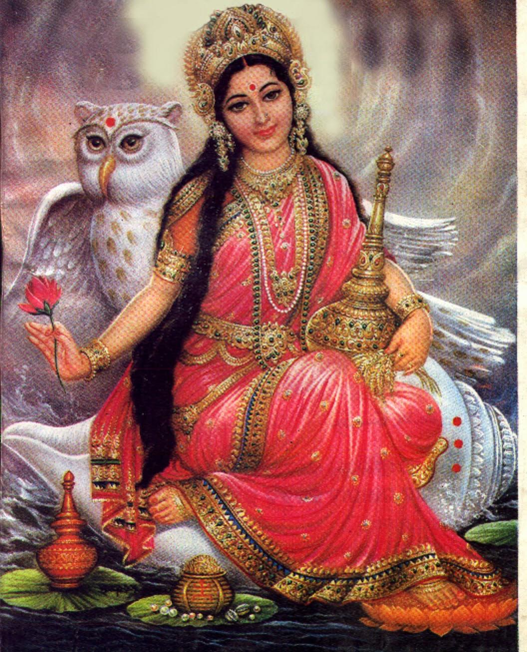 Goddess Laxmi With Owl Why laxmi rides on an owl carrier ? hindupath