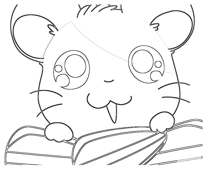 printable-hamtaro-ham-hams-unite-hamtaro-seeking-coloring-pages