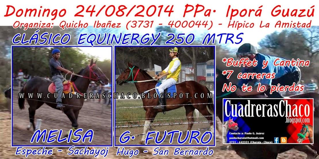 quicho 24-8