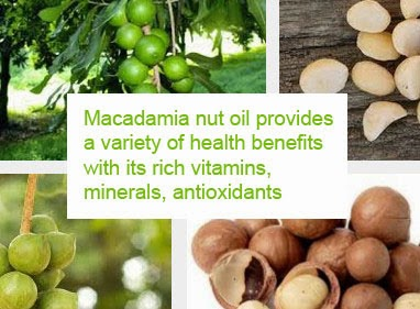 macadamia nut oil benefits