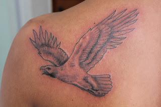 Eagle tattoo - Tatuagem   225 guiaSatyagraha Tattoo