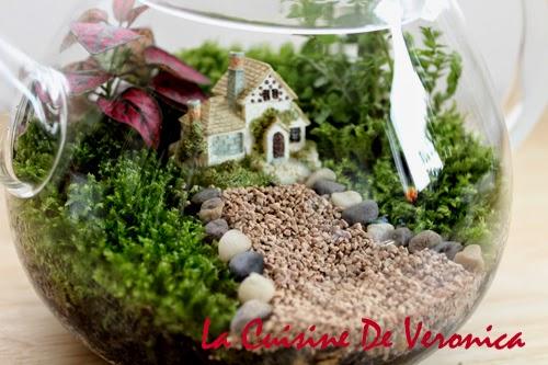 苔蘚微景觀 Moss Terrarium