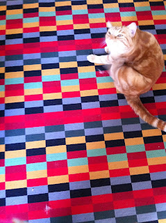 Ginger cat on a rug