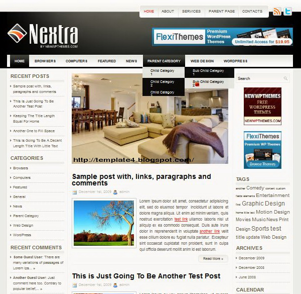Nextra WordPress Theme