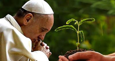 Família Franciscana do Brasil assume Laudato Si' como compromisso de trabalho para próximo quadriênio
