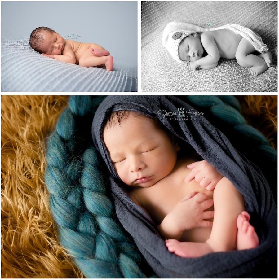 eugene, or newborn photography
