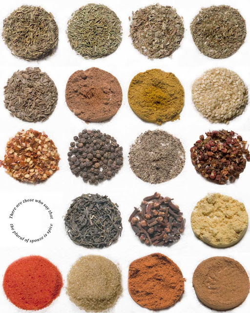 "Photo composite of herbs, spices and other condiments. Has text inlaid reading ""There are those who say that the plural of spouse is spice"""