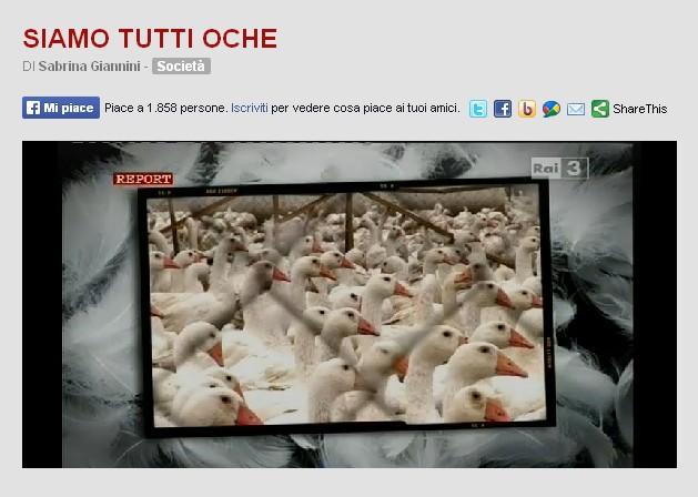 http://www.report.rai.it/dl/Report/puntata/ContentItem-3e1844c1-87db-4948-b074-3715bb98e66a.html