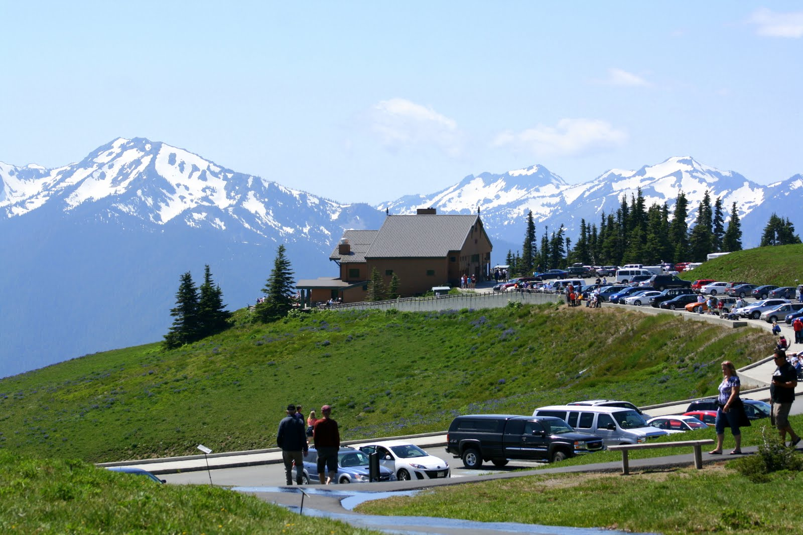 of paved road from Port Angeles to the Hurricane Ridge Visitor Center ...