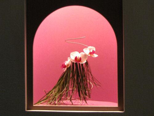 Philadelphia Flower Show Hula Miniature