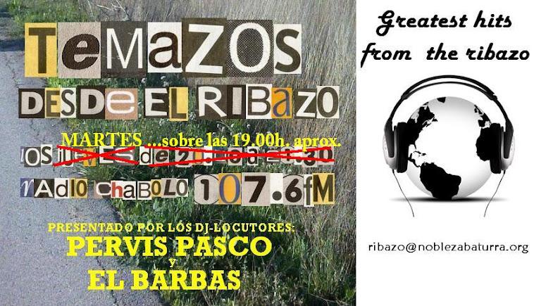 TEMAZOS DESDE EL RIBAZO