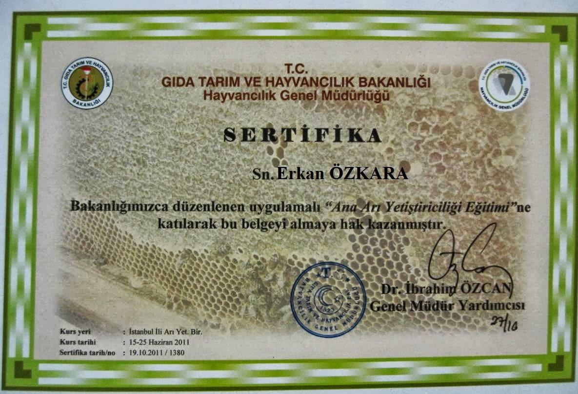 Bartinli arici yaylacik köyü kestane bali üretimi orman bal 1995