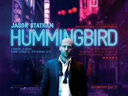 Chim Ruồi - Hummingbird
