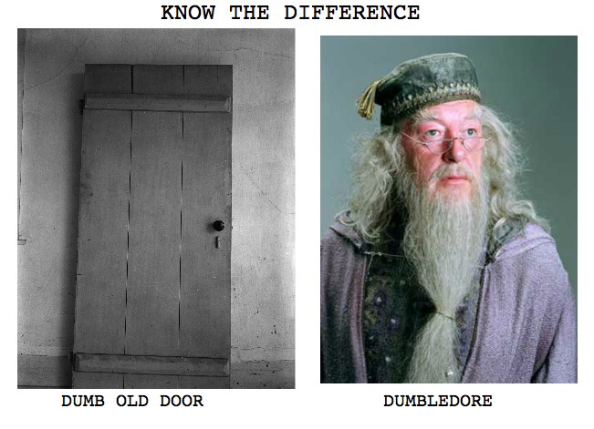 Dumb Old Door And Dumbledore