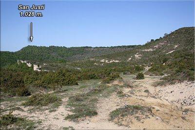 Marcado camino de Arluzea, frente a nosotros, tras el hayedo, San Justi