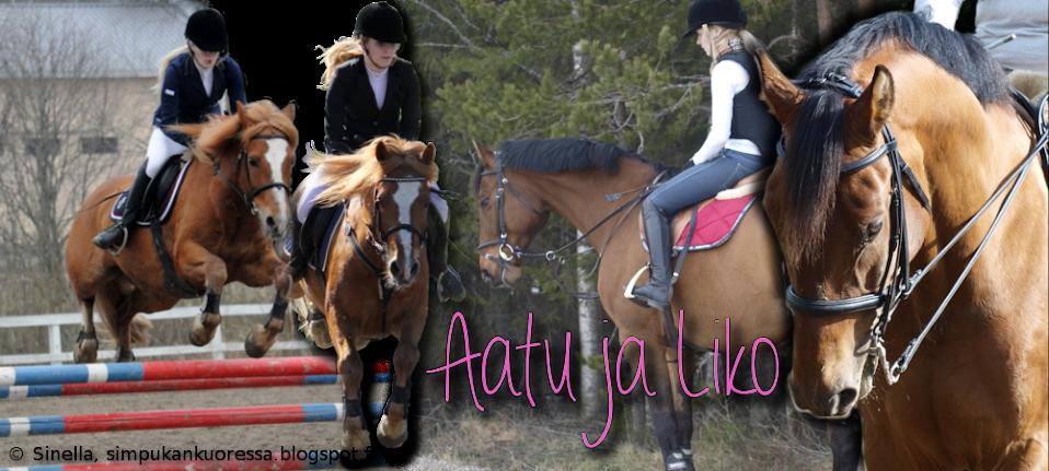 Aatu & Liko