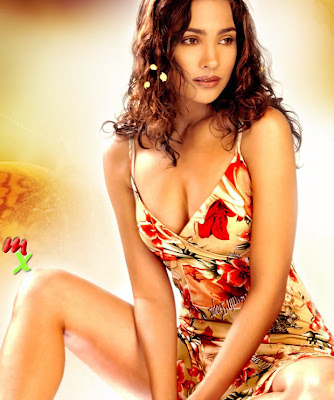 Lara Dutta Fantastic Wallpaper for Don 2