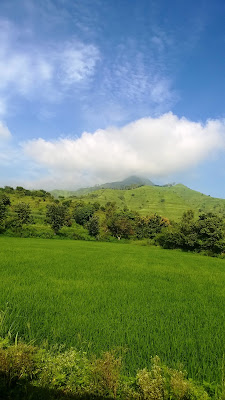 Puen, Western ghats