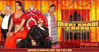 Meri Shadi Karao (2013) 1CD DVDRip Watch Online Free Download