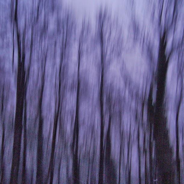 Gerd Weyhing - Les arbres ont des oreilles / source : gerdski.bandcamp.com