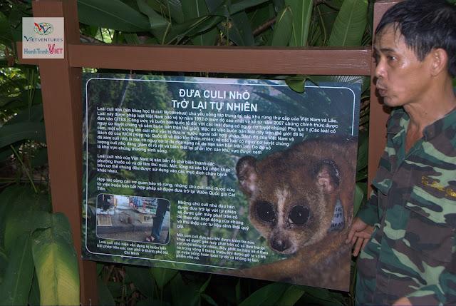 Tham quan Đảo Tiên ở Rừng Nam Cát Tiên