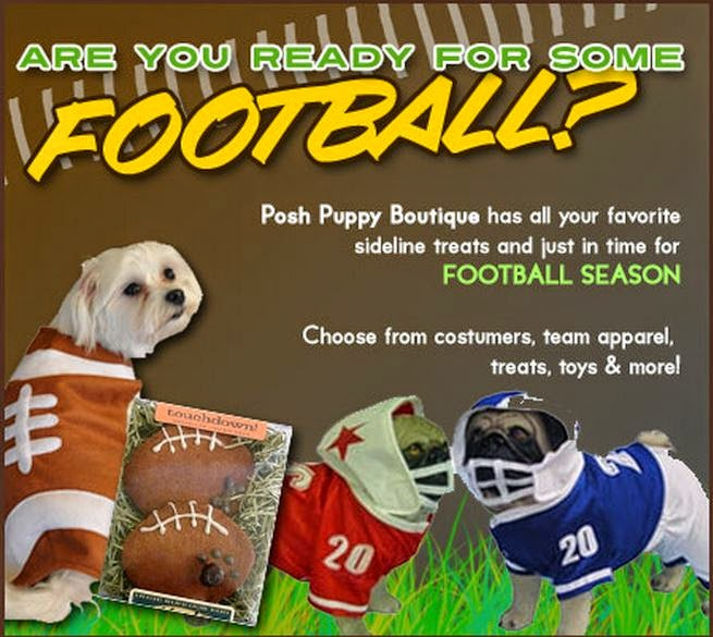 Posh Puppy Football