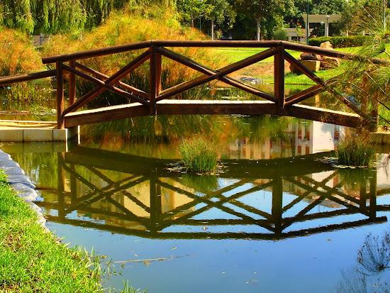 Que significa soñar con puente