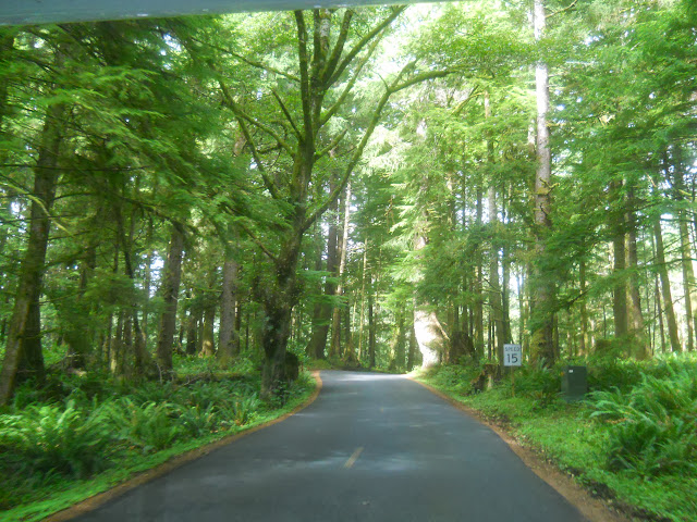 road to Ecola State Park north of Cannon Beach