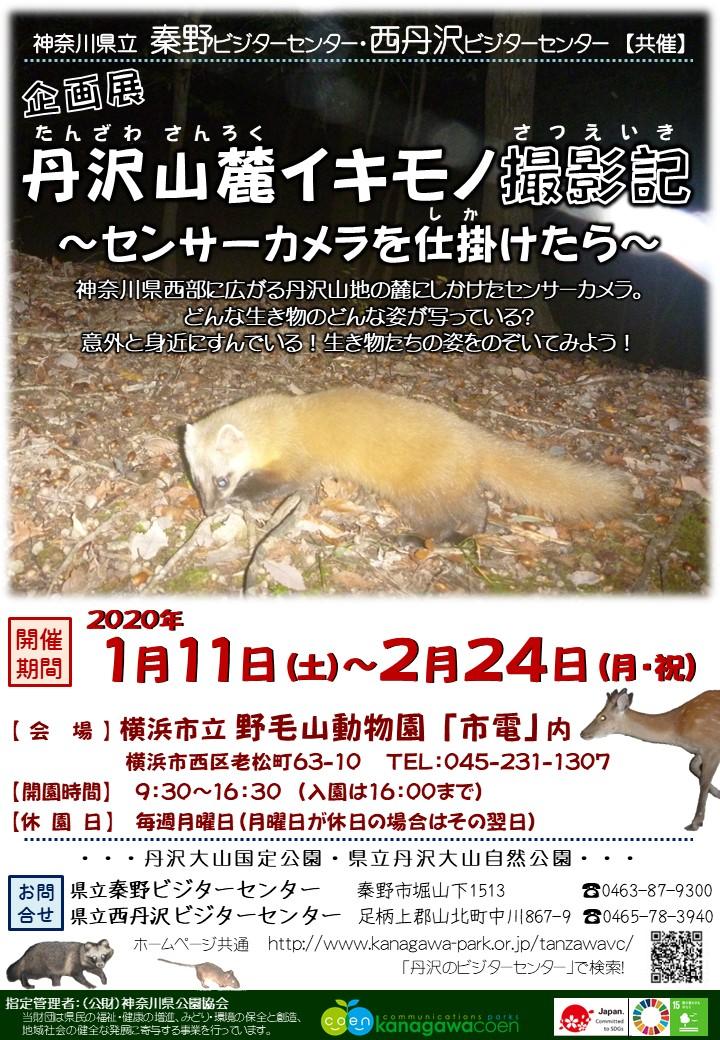 巡回企画展「丹沢山麓イキモノ撮影記~センサーカメラを仕掛けたら~」