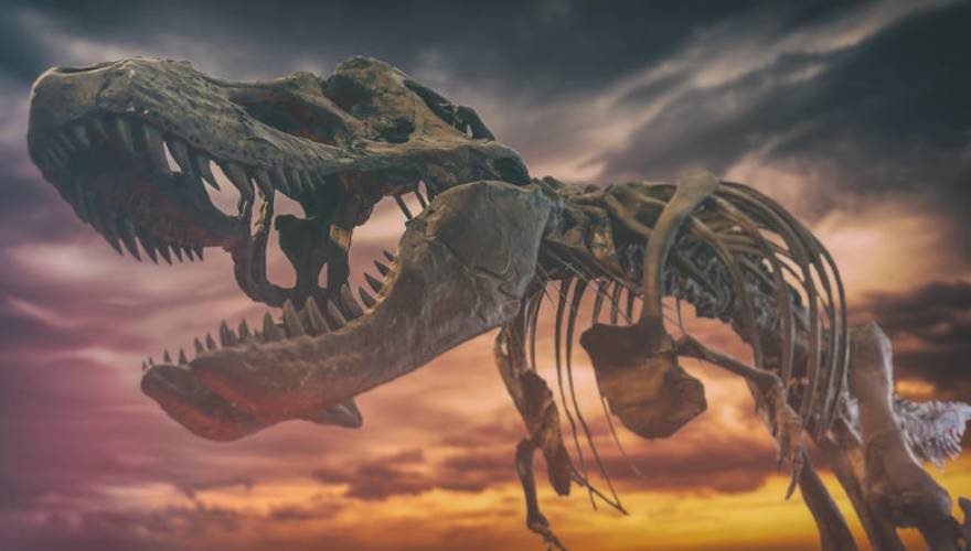 Νέα θεωρία: Οι δεινόσαυροι άρχισαν να χάνονται πριν τους εξοντώσει ο αστεροειδής
