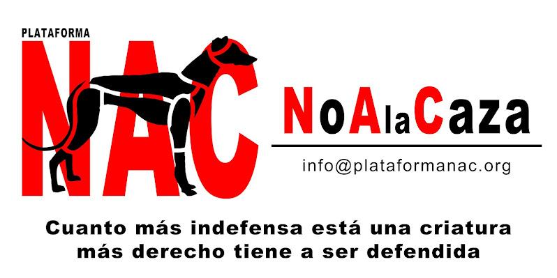 Plataforma NAC