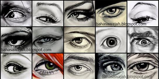 Kepribadian dari bentuk mata, karakter bentuk mata, sifat bentuk mata, gaya dari bentuk mata, tipe mata, jenis-jenis mata dan sifatnya, watak dari bentuk mata, mata kejam, mata bersahabat, mata ramah, mata teduh