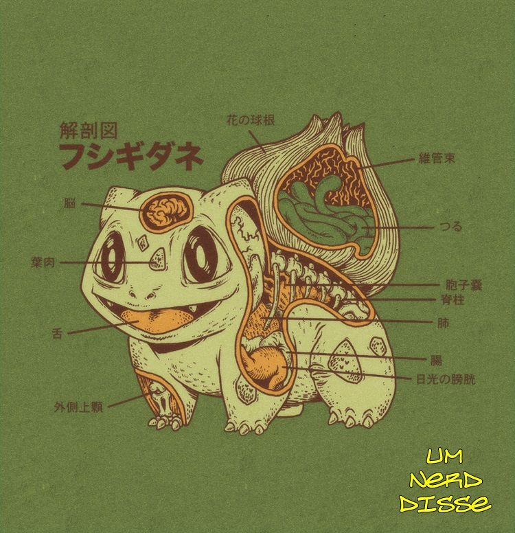 Biología Pokémon (Un poco friki, pero vale la pena el intento :)) Biologia+Pok%C3%A9mon+02
