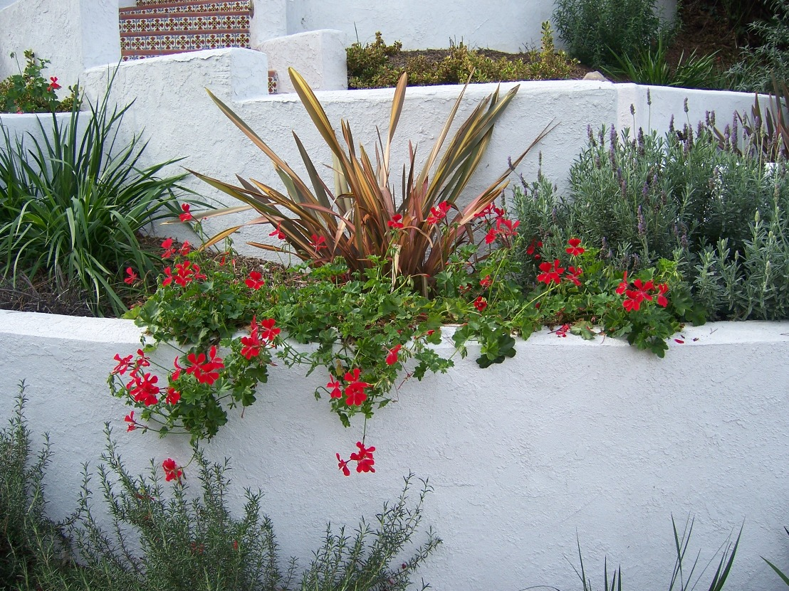 The 2 minute gardener photo retaining wall with stucco for Stucco garden wall designs